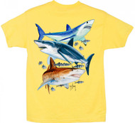 Guy Harvey 3 Sharks Boys Tee Shirt in Yellow, Royal Blue, Red or Lime