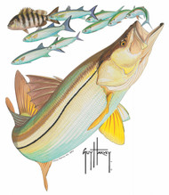 Guy Harvey Snook Window Decal