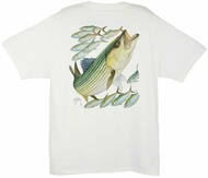 Guy Harvey Striped Bass Men's Back-Print Tee w/ Pocket in Ocean Blue, Stonewashed Green or White
