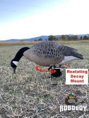 Motion Decoy Mount