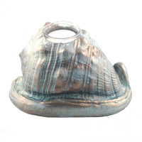 "4400.O - Cameo Shell, Ornament  Moon Snail, Ornament (No Magnet, Non-Hanging), Xlarge (15cm / 6.0""), Each"