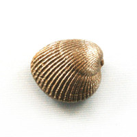 "4030.X - Cockle Shell, Christmas Ornament, Mini (3cm / 1.18""), Each"