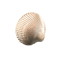 "4000.O - Clam Shell, Paperweight, Ornament (No Magnet, Non-Hanging), Mini (3cm / 1.18"" ), Each"