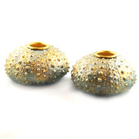 "3100.C - Sea Urchin, Candle Holders, (2 Pieces), Small (9cm / 3.5"" diameter), Each"