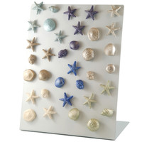 "5098.R - Sealife Collection, Magnet, Refill Kit, Mini  (3cm / 1.5""), per Kit of 80"