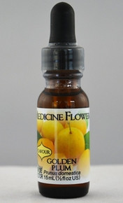 Plum (Golden) Flavour Extract