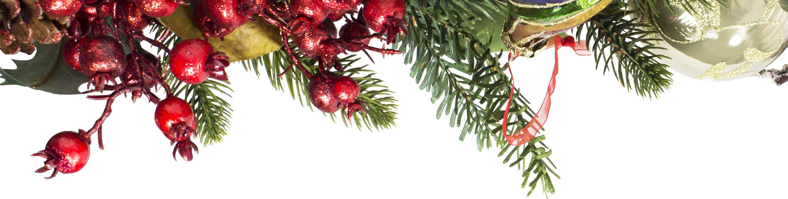 christmas-banner-snippet.jpg