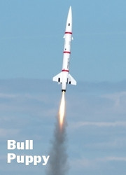 "Public Missiles PML Flying Model Rocket Kit 3"" Bull Puppy  PML 30381"