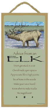 ADVICE FROM AN ELK