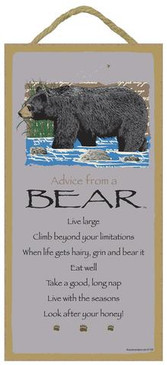 ADVICE FROM BEAR