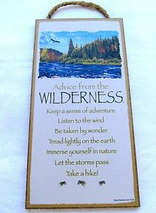 ADVICE FROM WILDERNESS