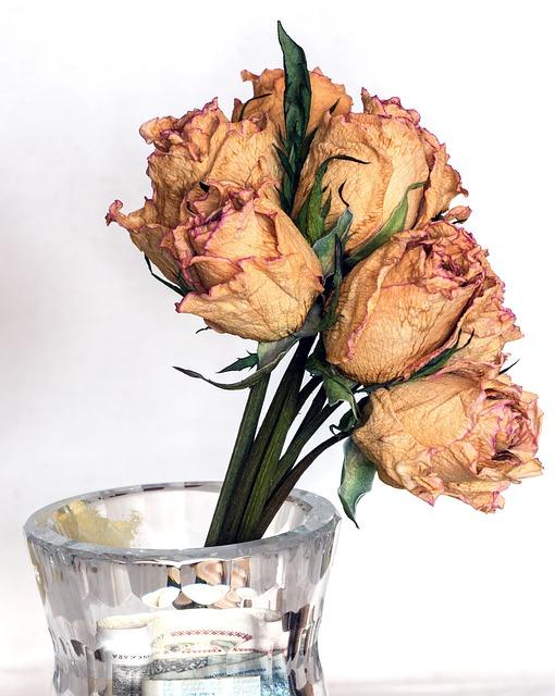 How To Preserve Your Favourite Bouquet Oak Farms Flower Outlet Inc