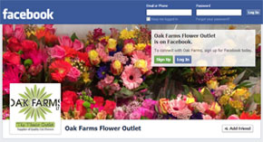 Flower Outlet on Facebook