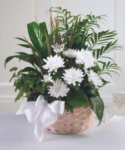 Peaceful Garden Basket