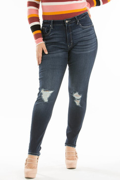 The Curvy High-Rise Distressed Jean