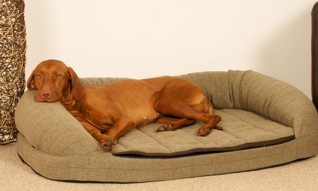 country-green-tweed-dog-bed.jpg