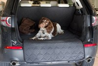 discovery-sport-boot-with-harvey.jpg