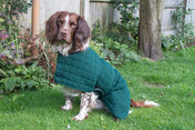 After Exercise Dog Coat