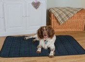 Thermal Superwarmer Dog Mat