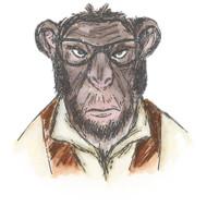 Sizzix Framelits Dies By Tim Holtz - Hipster Chimp