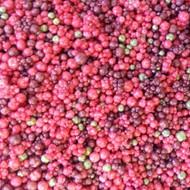 US Artquest Mini Prills - Berry Nice 3 oz