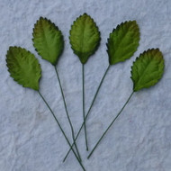 Green Mulberry Paper Leaves - 30mm