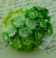 Wild Orchid Crafts Cosmos Daisy Mixed Green/White