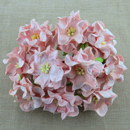 3.5cm Gardenia - Pale Pink