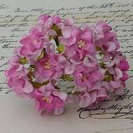 Small Gardenia - 2-Tone Pink/Baby Pink