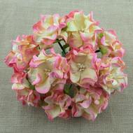 6cm Gardenia - 2-Tone Champagne Pink