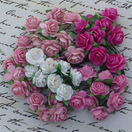 Wild Orchid Crafts 100 Mixed Pink Open Roses