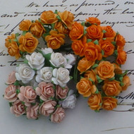 Wild Orchid Crafts 10 mm Mixed Orange and Peach Tone