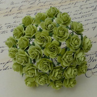 Wild Orchid Crafts 20 mm Light Lime Open Rose