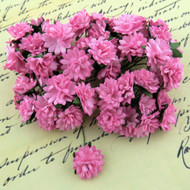 Wild Orchid Crafts Aster Daisy Pink