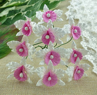 Wild Orchid Crafts Orchids Small White and Baby Pink