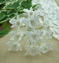 Wild Orchid Crafts Orchids Small White