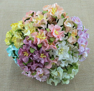 Wild Orchid Crafts Miniature Mixed Color Gardenia