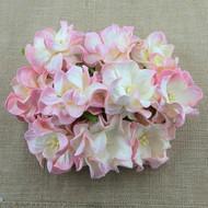 Small Gardenia - 2-Tone Baby Pink/Ivory (SAA-344)