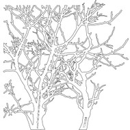 The Crafters Workshop 6 x 6 Stencil - Branches (TCW208)