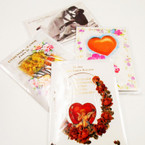 SPECIAL Musical Spanish Valentine Cards 25 per bx  .18 ea