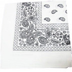 "20"" Square All White Color Bandana's .52 ea"