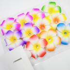 """4"""" Asst Color Hawaiian Style Flower  Gator Clip  Hair Bows w/ Stone .56 each"""