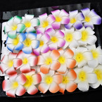 "2 Pack 2.5"" Hawaiian Flower Gator Clips  Asst Color .54 per set"