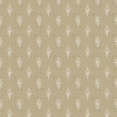 white-pine-in-fawn.jpg