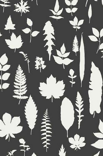 Leaves Wallpaper in Graphite  (Extra Wide)