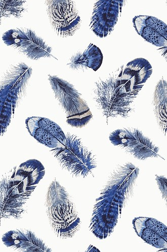 Feathers Wallpaper in Blue (Thibaut)