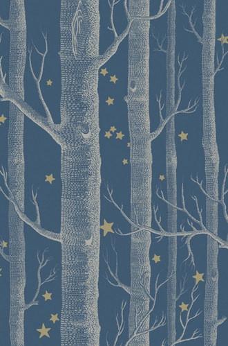 Woods & Stars Wallpaper in Midnight
