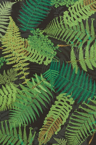 Fernarium Fabric in Green & Black