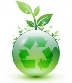 environment-00.jpg