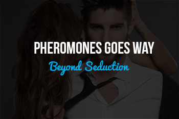 Pheromones in the Workplace
